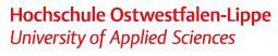 Logo HS OWL